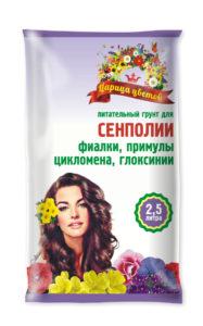 Царица цветов_сенполии_2,5